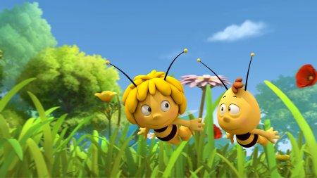 смотреть пчёлка майя все серии новые серии подряд